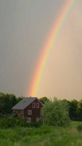 234-cherry-rainbow-w